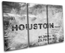 Houston Texas City Typography - 13-2116(00B)-TR32-LO